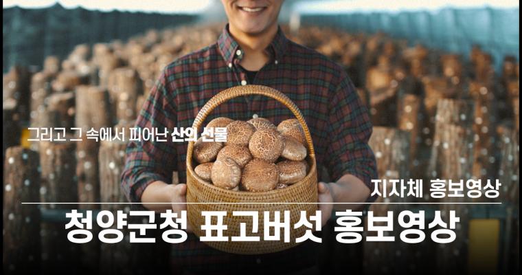 [홍보영상] 지자체 홍보영상 청양군청 표고버섯